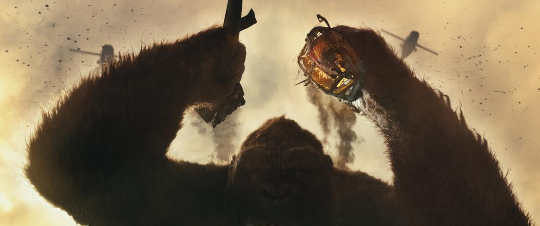 Kong KoponyaSziget jelenetfoto (17)