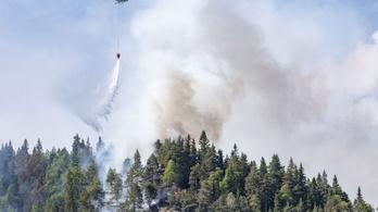 Norvég erdőtüzek: már halálos áldozat is van
