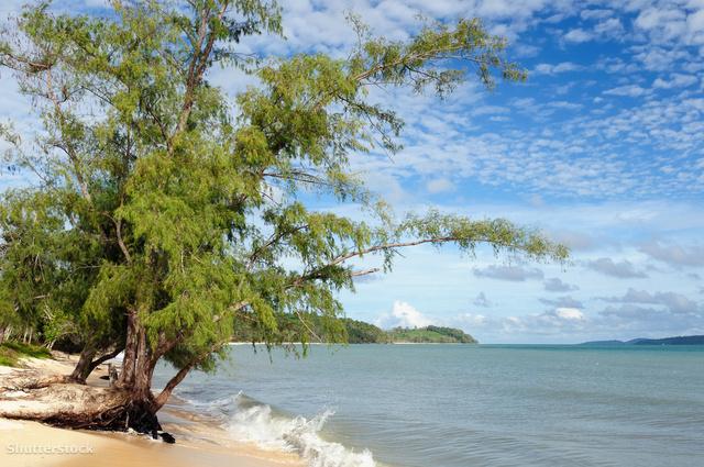 A Botum Sakor Nemzeti Park egyik homokos partja.