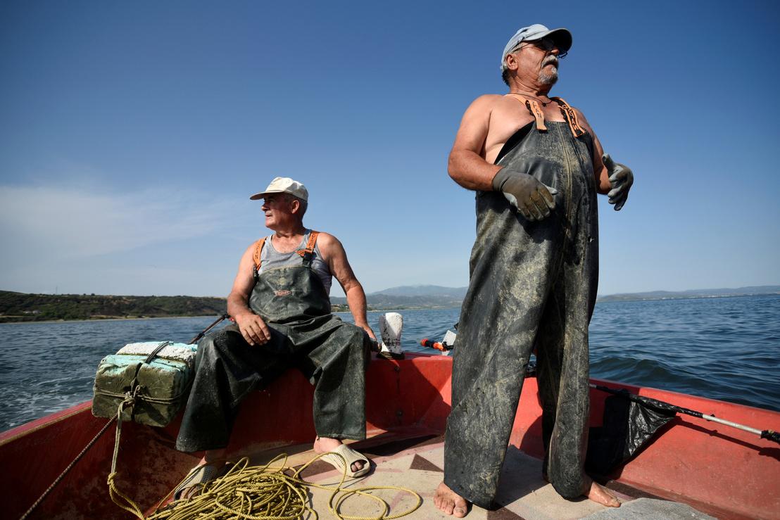 2018-07-02T130216Z 1341863007 RC14297FD980 RTRMADP 3 GREECE-FISH