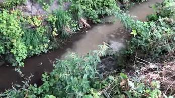 Szennyvíz ömlött egy patakba Nagytarcsán