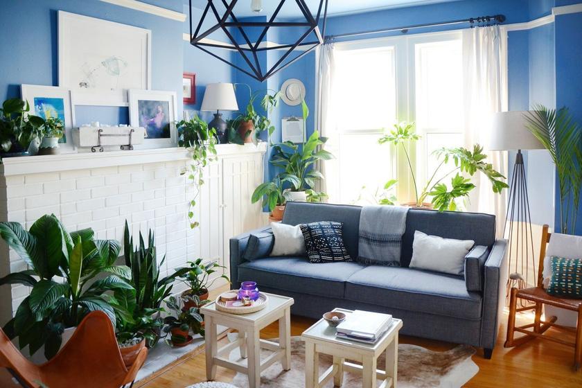 Aprócska lakás, de teleültették zöld növénnyel: gyönyörű lett a végeredmény