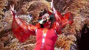 Félelem és rettegés a Björk-koncerteken