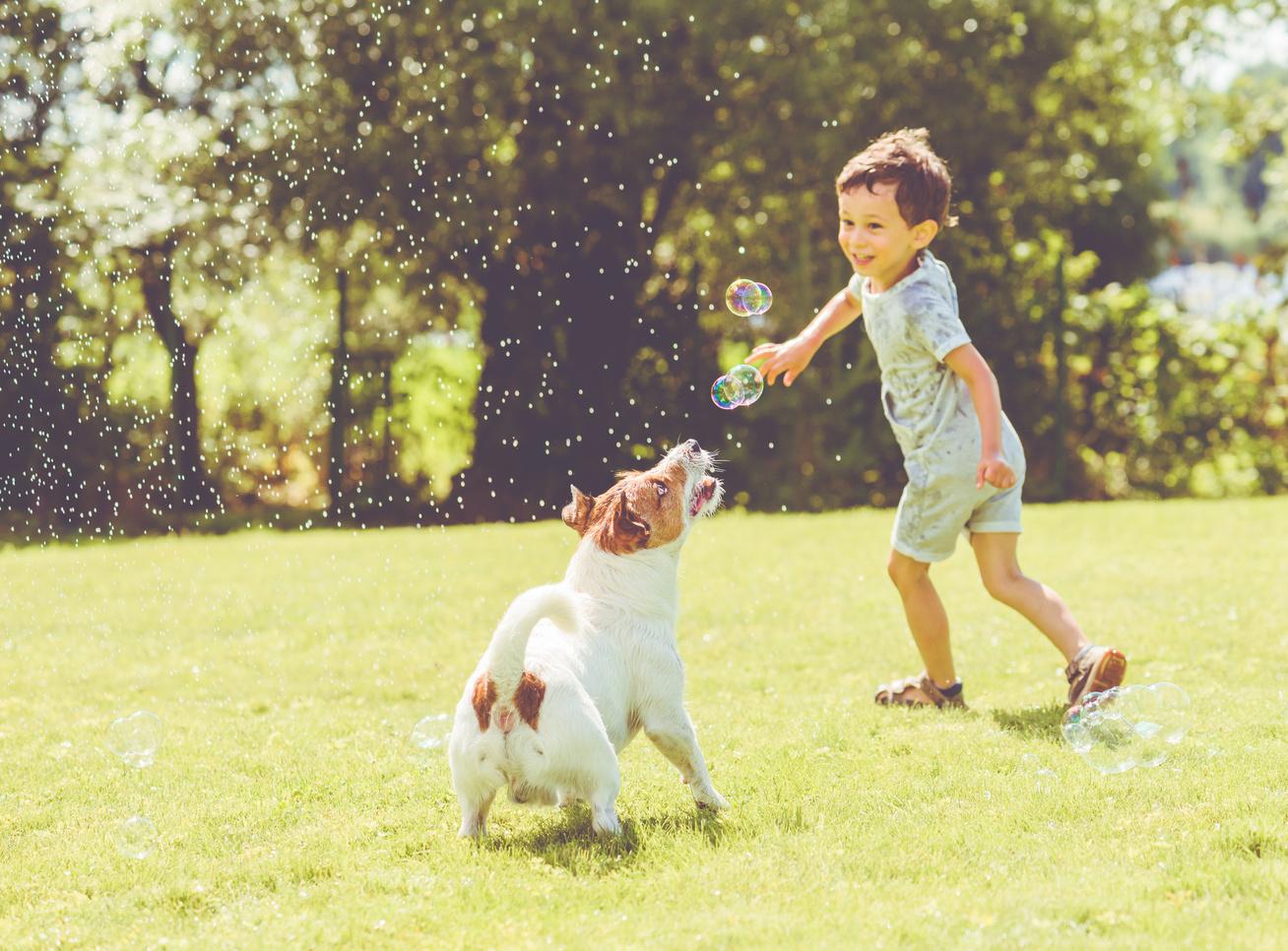 gyerek kutyaval