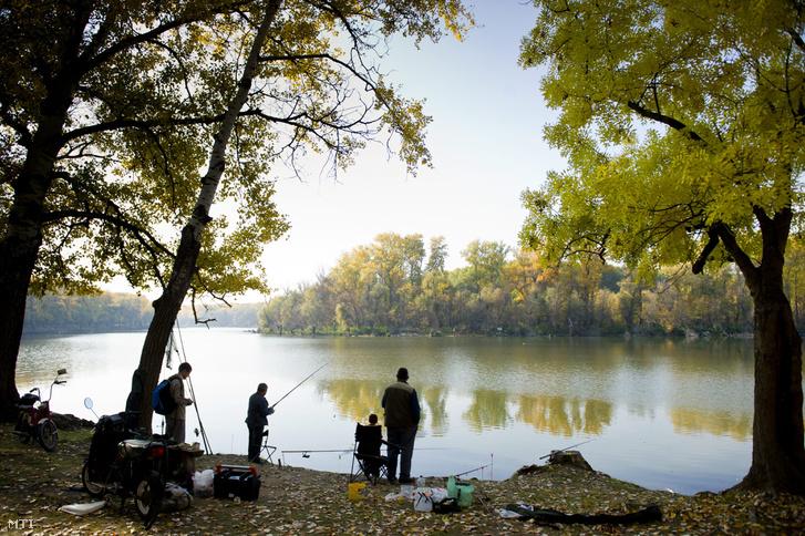 Horgászok az ország egyik legszebb természetvédelmi területén, a mártélyi Holt-Tisza partján 2011 októberében