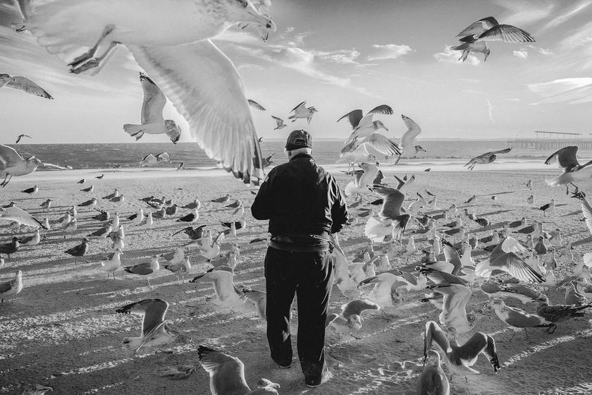 A legintimebb pillanatot kapta el a fotós egy 8,5 milliós város utcáin