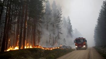 Több mint 20 ezer hektáron pusztítanak erdőtüzek Svédországban