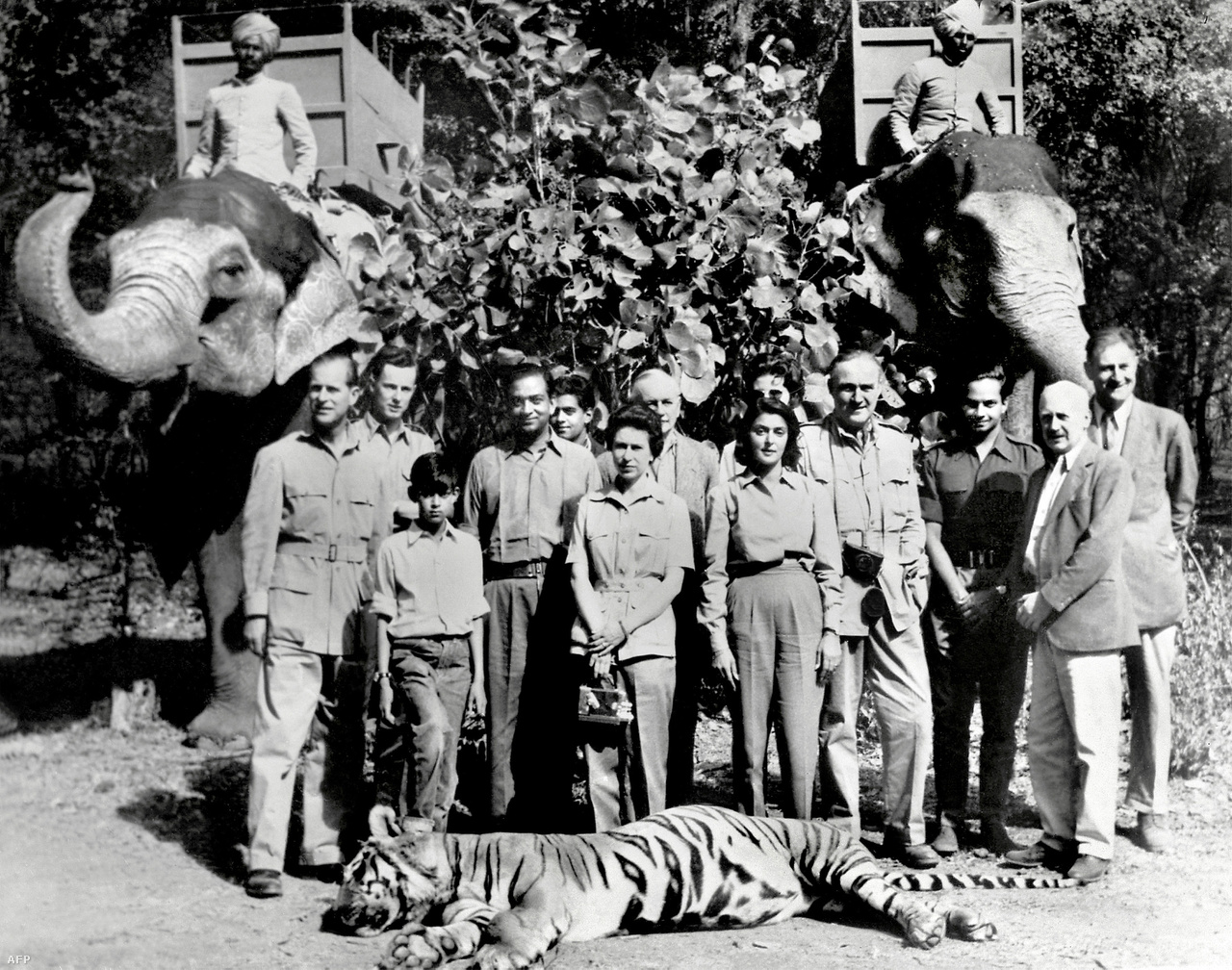 A királynő és férje 1961-es dzsaipuri látogatásán. A kép előterében fekvő tigrist Fülöp herceg lőtte le egy vadászaton.