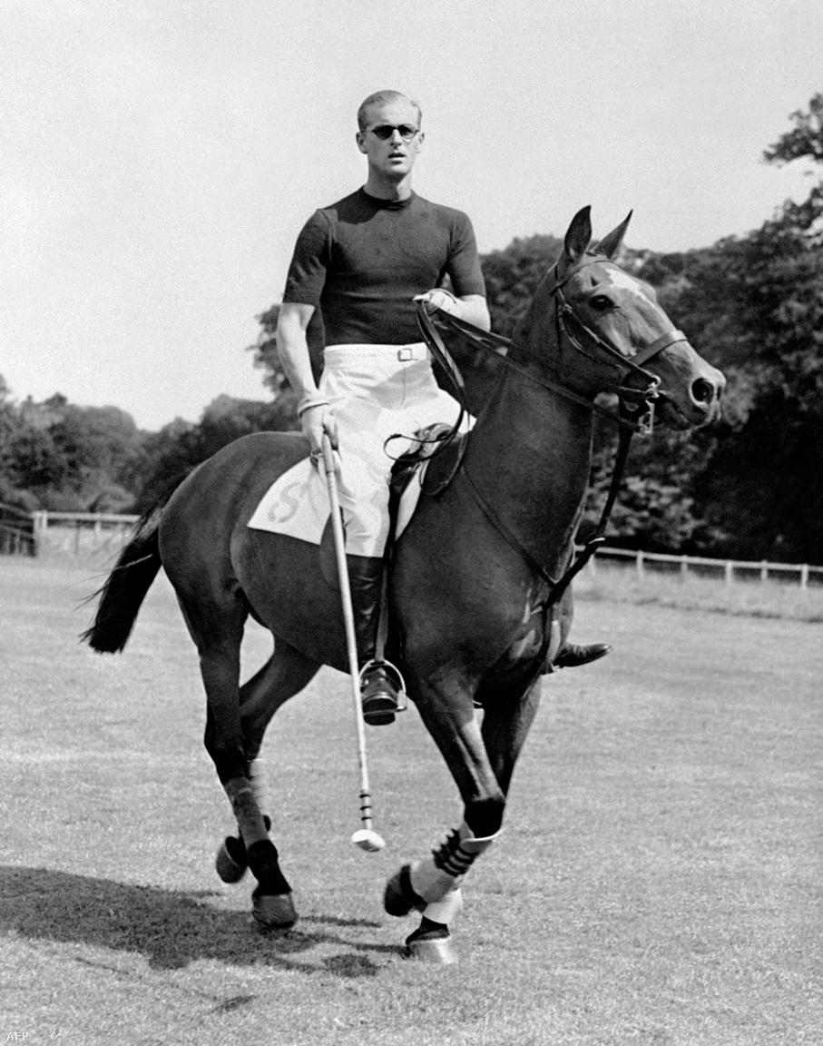 Fülöp kedvelt sportja volt a lovaspóló. Ez a kép 1950-ben, néhány nappal második gyerekük, Anna hercegnő születése előtt készült.
