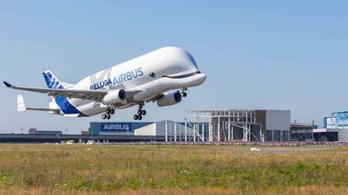 Megtette első útját az Airbus Beluga XL