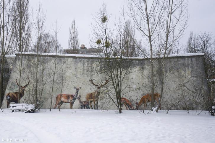Egy ukrajnai, pripjatyi falfestés hívja fel a figyelmet az élőlények hiányára
