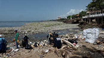 Szeméttenger öntötte el a dominikai partokat
