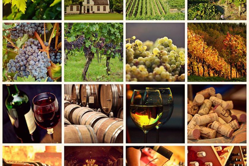 Jellemed az évek alatt lesz nemesebb, akár egy jó bor