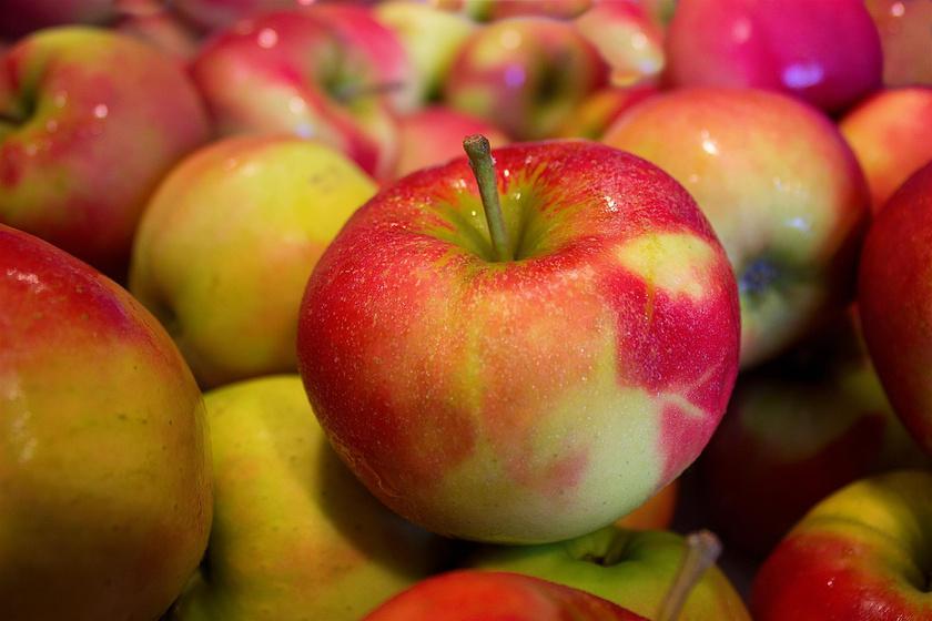 Az alma 15 gramm cukortartalmához 2,4 gramm élelmi rost társul. Vagyis hébe-hóba nyugodtan elmajszolhatsz egyet tízóraira vagy uzsonnára.