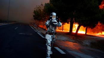 Erdőtűz pusztít Görögországban: legalább 74 halott