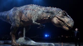 Miért voltak olyan csökevényesek a T. rex karjai?