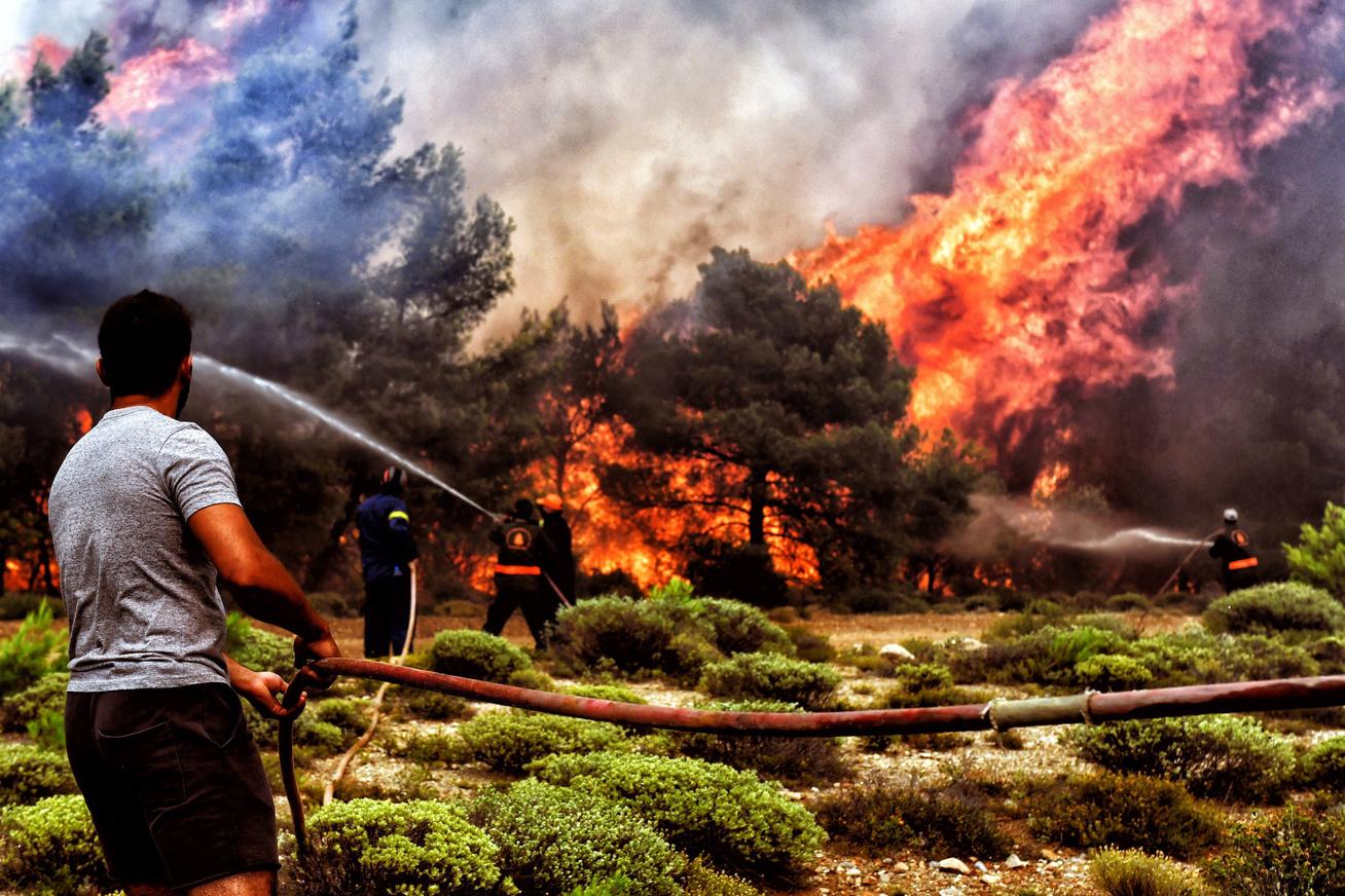 Tüzet rakni – Wikipédia