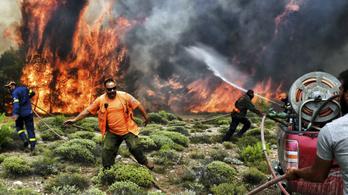 79-re nőtt a görögországi tűzvész áldozatainak száma