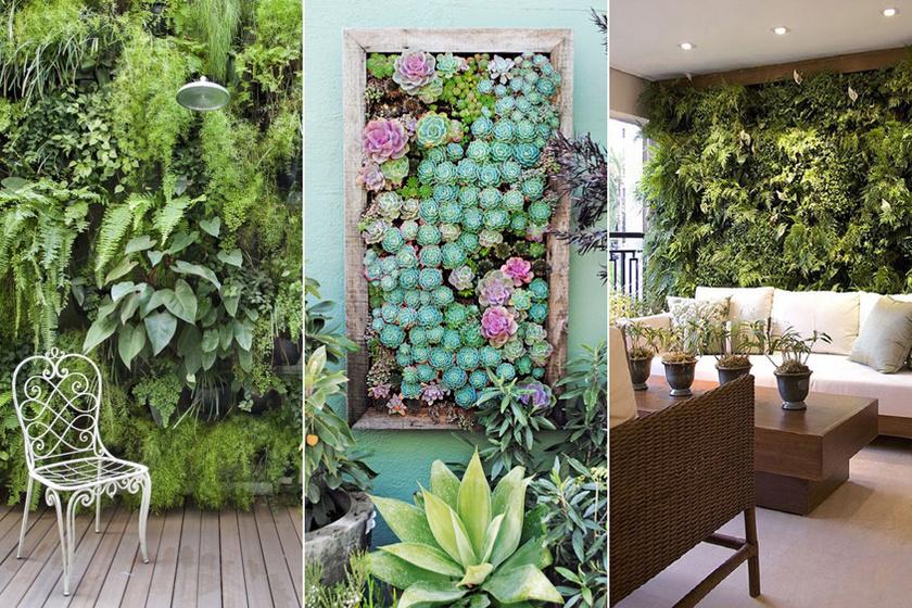 Így készíts álomszép növényfalat az erkélyre: nem szárad ki, ha jól csinálod