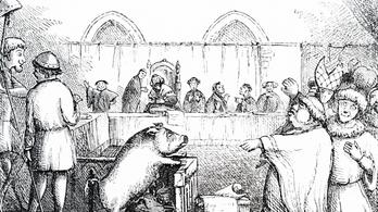 A középkorban állatoknak is járt ügyvéd és bírósági tárgyalás