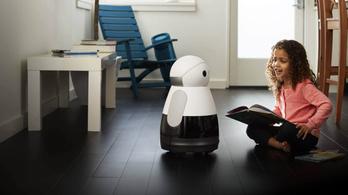 Mégsem dobják piacra a világ legcukibb robotját