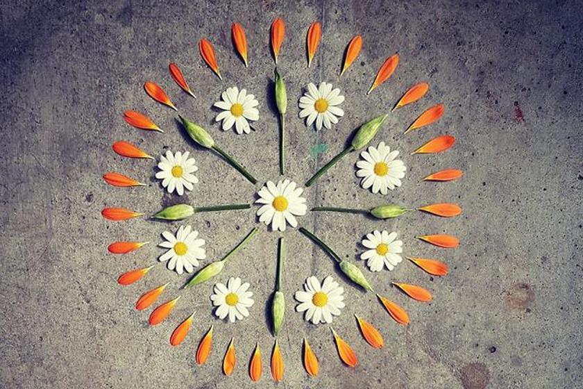 Kavicsokat, leveleket szedett, és szépen elrendezte őket: bámulatos az eredmény