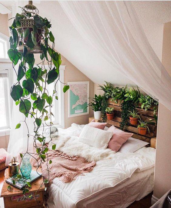 Télen se feledkezz meg a zöld növényekről: tisztítják a levegőt, és elűzik a rosszkedvet.