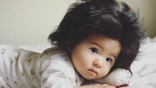 Ha hat hónaposan ennyi haja van, mi lesz később??