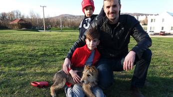 A kampány után visszakerült a sintértelepre az egyik jobbikos kutyája