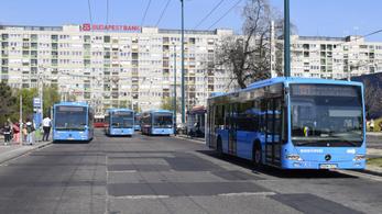 Járatritkítással védené a buszsofőröket a hőségtől a szakszervezet