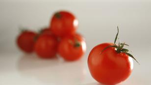 Mennyi vegyszert tartalmaznak a koktélparadicsomok?