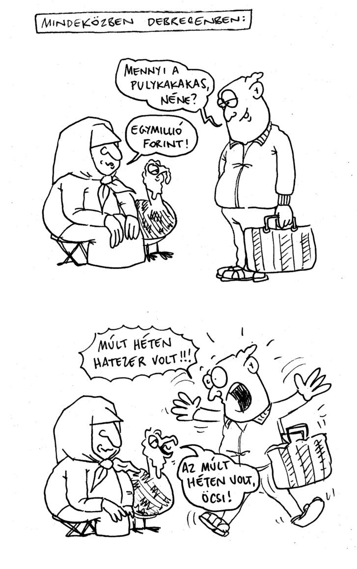 pulykakakas