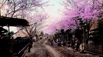 Keleti nyitás 150 éve, avagy a monarchia japán kapcsolatai
