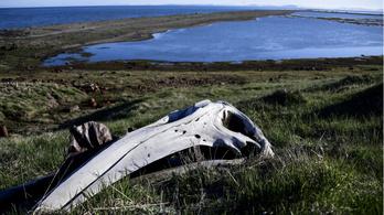 Csukcsföldön kötött ki az alaszkai halász, aki Kínába akart vitorlázni
