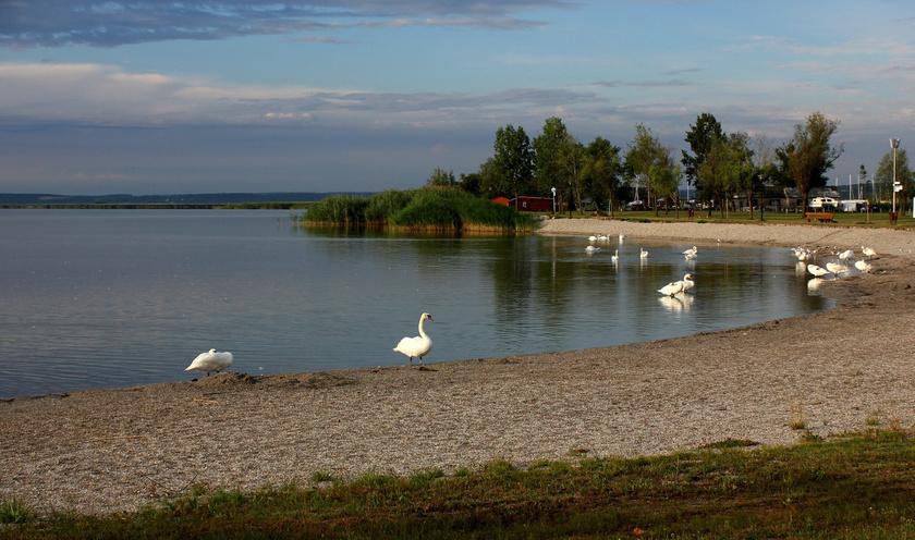 Fertőrákos legfontosabb vonzereje nyáron a Fertő-tó vízitelepe: itt található a tó egyetlen magyarországi strandja, mégis csendes, nyugodt. A belépő 750 forint, diákoknak és nyugdíjasoknak 500 forint.