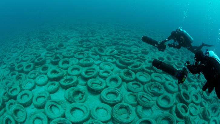 Mint egy tengermélyi hulladéklerakat - íme az Osborne-zátony