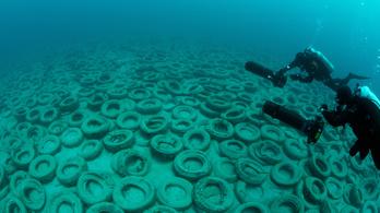 Így nem lett a használt autógumi a korallzátonyok megmentője