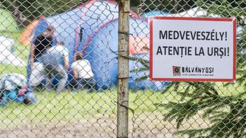 Tizenkét veszélyes medve kiemeléséről döntöttek Tusnádfürdőn