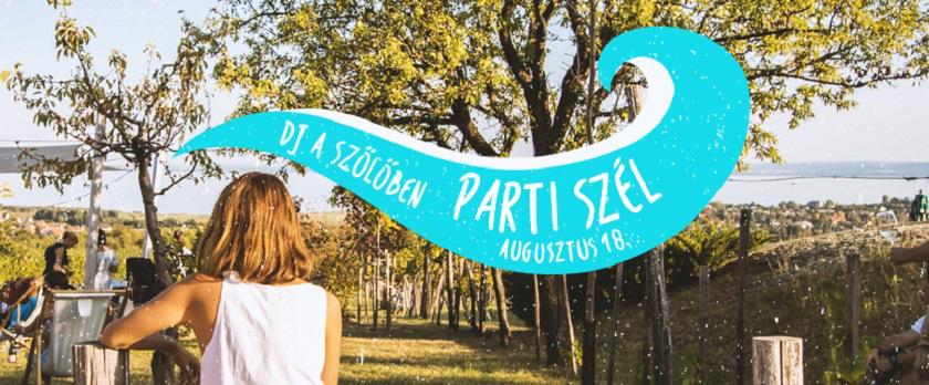 djaszoloben augusztus partiszel