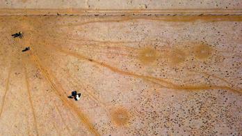 Ausztráliában 100 százalékos a szárazság