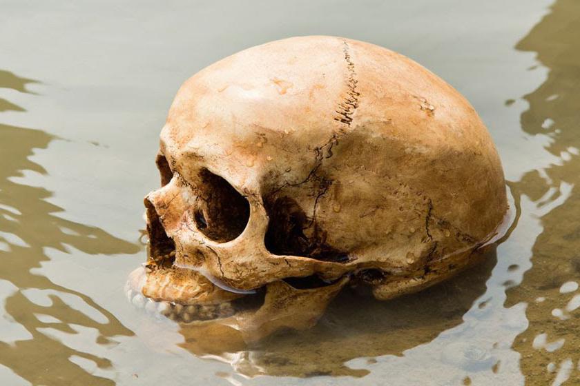 Az első feltételezés az volt, hogy a csontvázak japán katonák maradványai, akik robbanásban veszthették életüket.