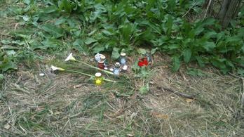 Mégsem a soroksári kocogó nő gyilkosát találták meg