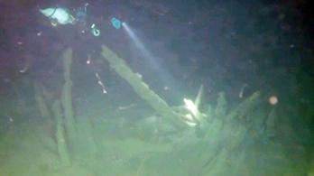 2500 éves hajóroncsot találtak a Fekete-tenger mélyén