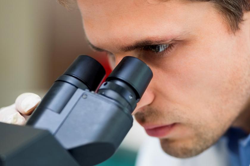A vastagbélrákot és a hasnyálmirigy-gyulladást is megelőzheti: epesav okozta bajokra találtak gyógymódot magyar kutatók
