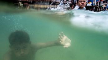 A tengeri cigányok gyerekei úgy látnak víz alatt, mint a delfin