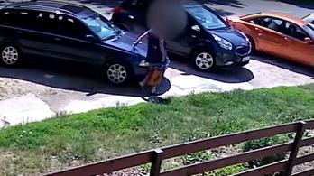 Elfogták a járdára parkoló autósokat büntető öntörvényű pécsi nénit