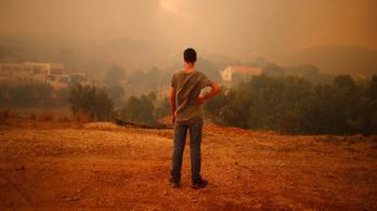 27 ezer hektáron teljesen leégett az erdő a portugál tűzben