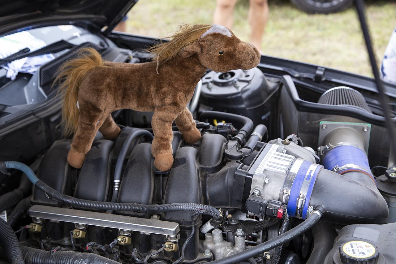 Ennél bájosabb, plusz egy pónilóerőt a teljesítményhez hozzáadó tuningot én még Ford Mustangon sosem láttam, gyanítom nem is fogok
