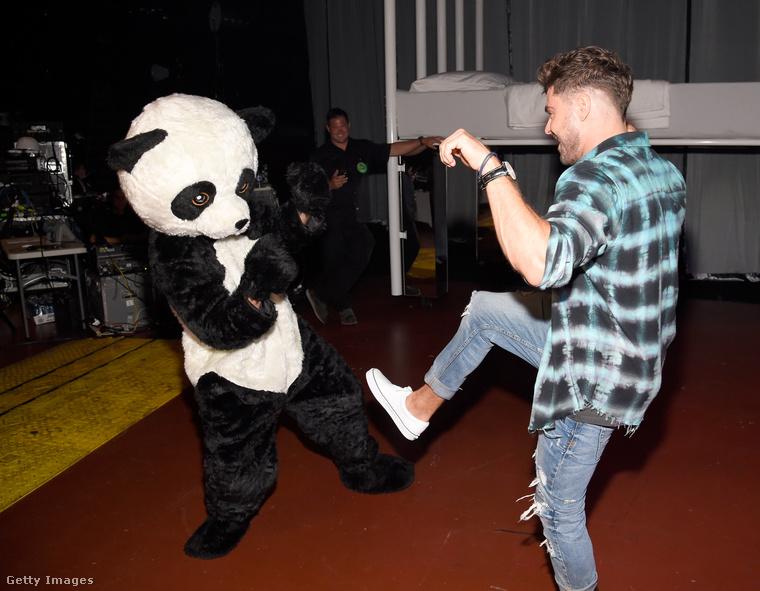 Itt Zac Efron éppen lerúgja egy panda veséjét.