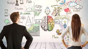 Férfi agy-női agy: tényleg akkora a különbség?